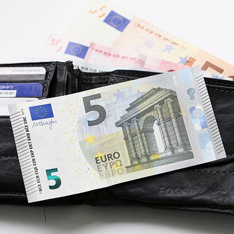 Viskas už 5 eurus